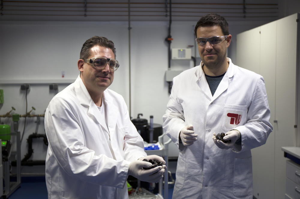 In order to produce the mussel glue in the laboratory, Dipl.-Ing. Christian Schipp (left), Dr. Matthias Hauf (right) and other researchers at the UniCat Cluster of Excellence reprogrammed strains of the intestinal bacterium, Escherichia coli.