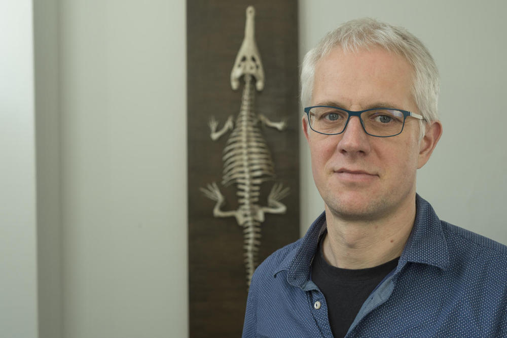 Evolutionary biologist Jens Rolff does research on the complex immune system of insects.